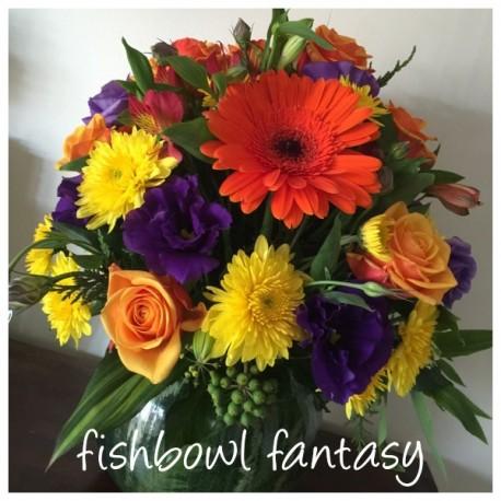 Fishbowl Fantasy