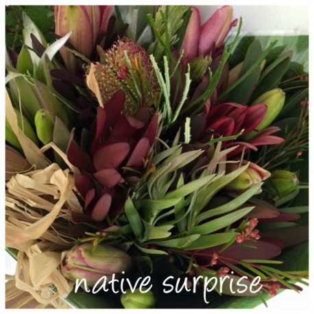 Native Surprise
