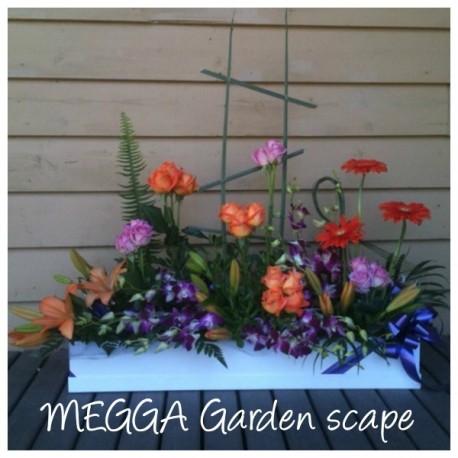 MEGGA garden scape