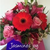 Jasmines Joy
