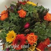 Bright Soul