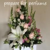 Prepare for perfume
